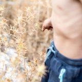 Kind bahnt sich seinen Weg durch ein Distelfeld